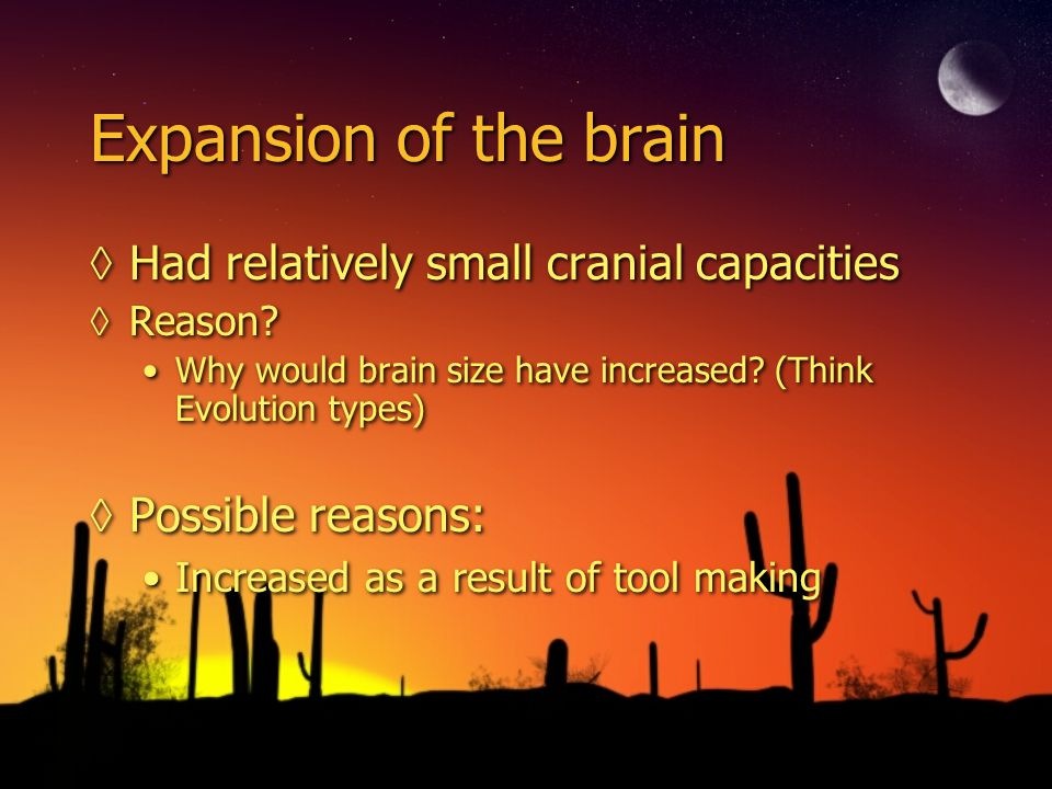Expansion of the brain Had relatively small cranial capacities Reason? Why would brain size have increased? (Think Evolution types) Possible reasons: