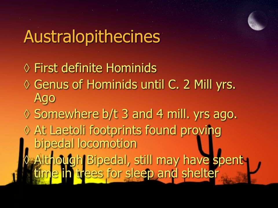 Australopithecines First definite Hominids Genus of Hominids until C. 2 Mill yrs. Ago Somewhere b/t 3 and 4 mill. yrs ago. At Laetoli footprints found