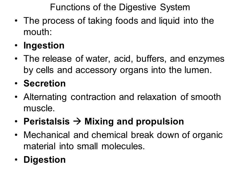 Functions of the Digestive System The process of taking foods and liquid into the mouth: Ingestion The release of water, acid, buffers, and enzymes by cells and accessory organs into the lumen.
