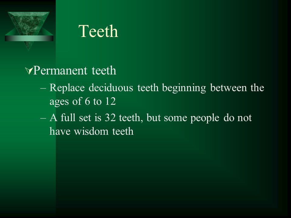 Teeth Permanent teeth –Replace deciduous teeth beginning between the ages of 6 to 12 –A full set is 32 teeth, but some people do not have wisdom teeth