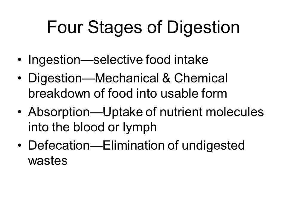 Four Stages of Digestion Ingestionselective food intake DigestionMechanical & Chemical breakdown of food into usable form AbsorptionUptake of nutrient molecules into the blood or lymph DefecationElimination of undigested wastes