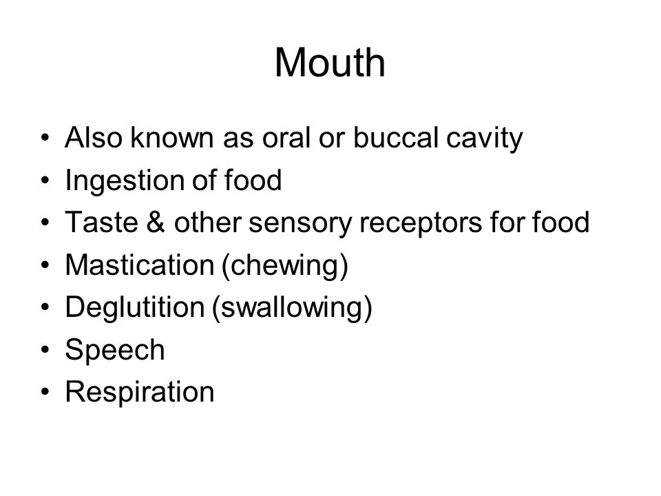 Mouth Also known as oral or buccal cavity Ingestion of food Taste & other sensory receptors for food Mastication (chewing) Deglutition (swallowing) Speech Respiration