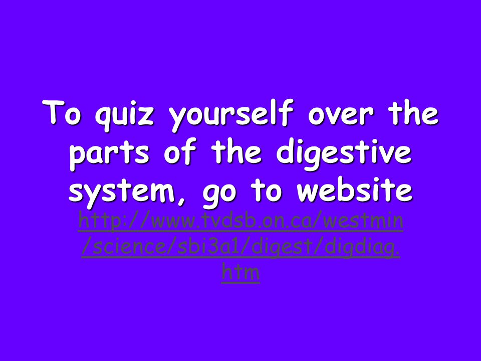 To quiz yourself over the parts of the digestive system, go to website http://www.tvdsb.on.ca/westmin /science/sbi3a1/digest/digdiag. htm
