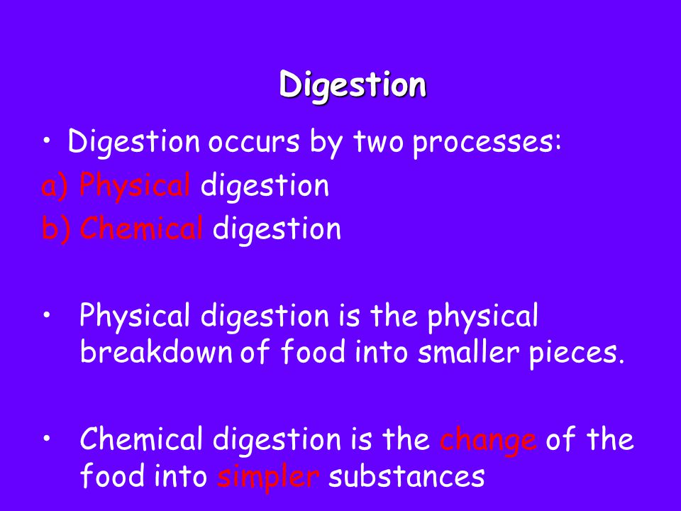 Physical digestion Physical digestion is the physical breakdown of food into smaller pieces.