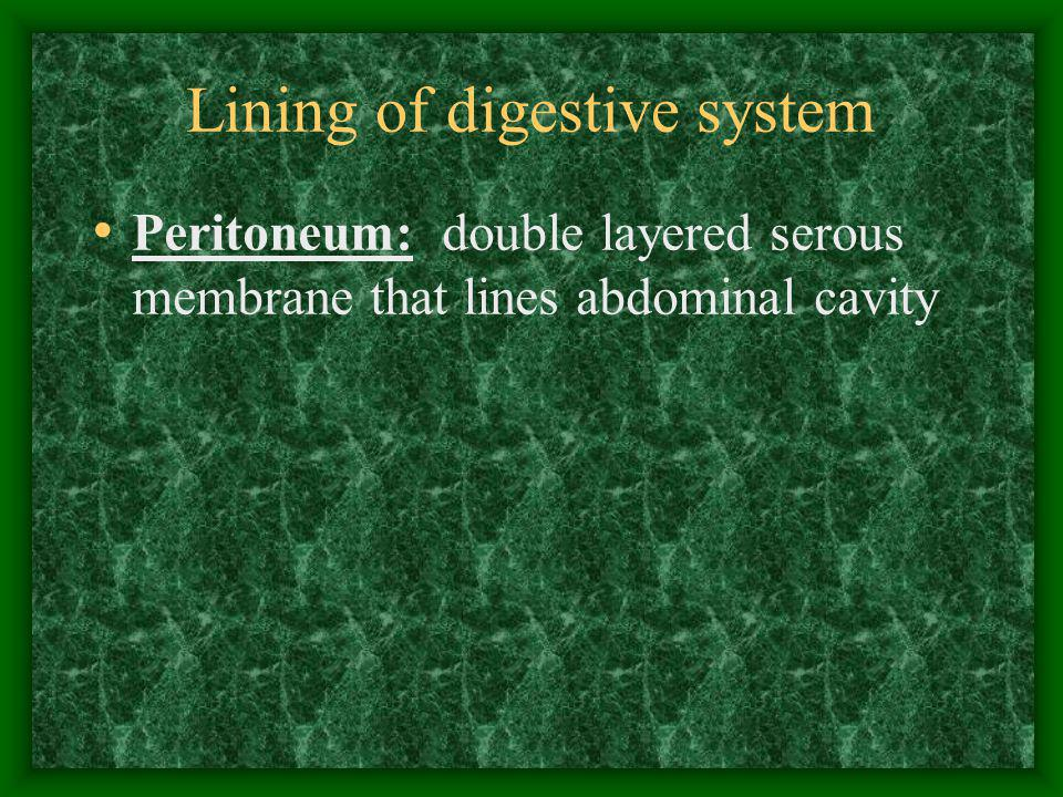 Deverticulosis Little sacs (diverticuli) develop in wall of colon Most people over age 60 have this When the sacs become inflamed = DIVERTICULITIS