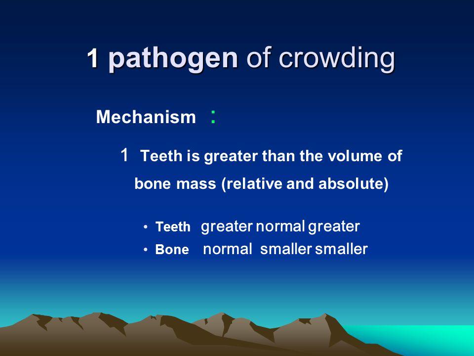 Heredity factors Evolution factors Mandibular hypoplasia Tooth number, size, shape