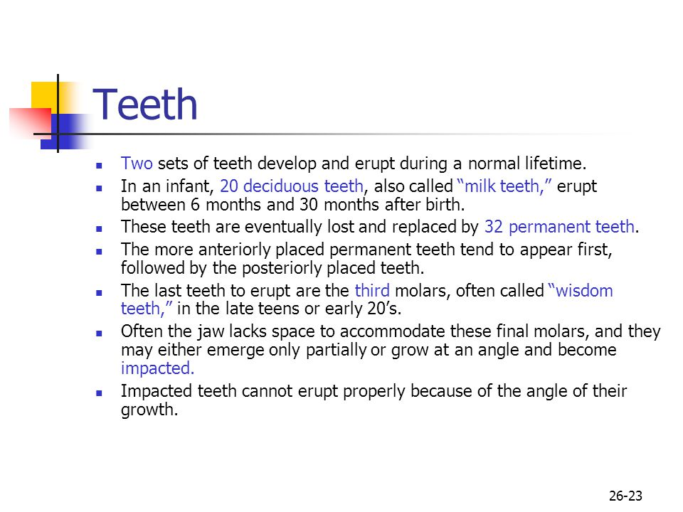 26-23 Teeth Two sets of teeth develop and erupt during a normal lifetime. In an infant, 20 deciduous teeth, also called milk teeth, erupt between 6 mo