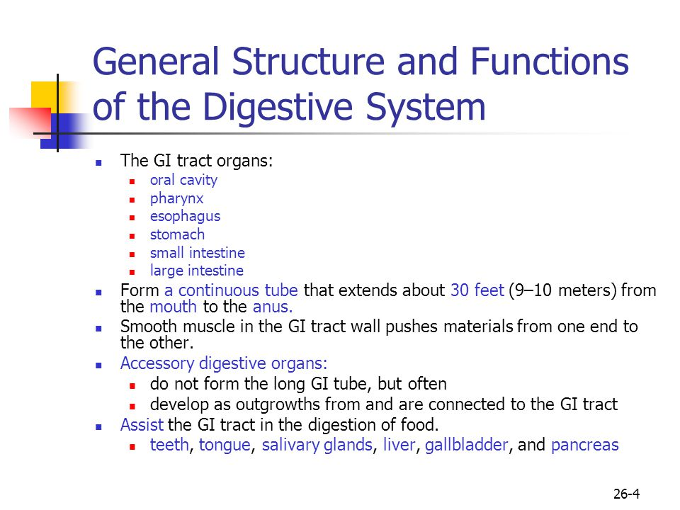 26-4 General Structure and Functions of the Digestive System The GI tract organs: oral cavity pharynx esophagus stomach small intestine large intestin
