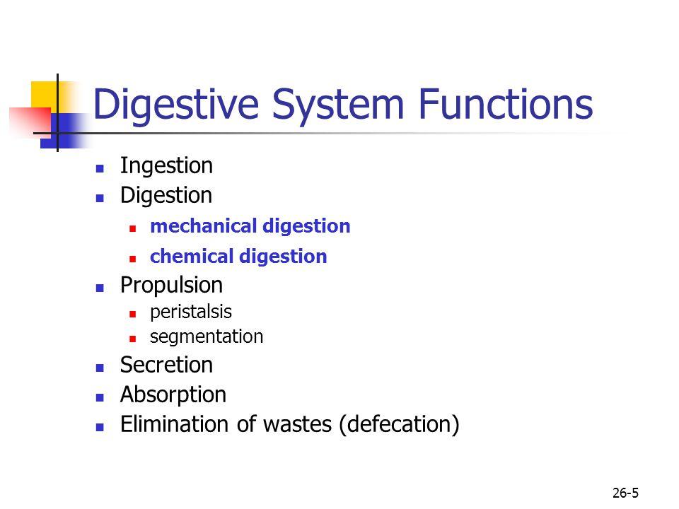 26-5 Digestive System Functions Ingestion Digestion mechanical digestion chemical digestion Propulsion peristalsis segmentation Secretion Absorption E