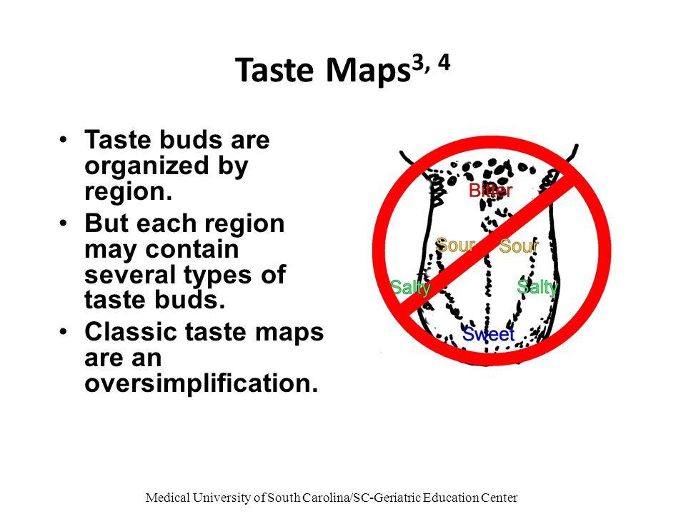 Medical University of South Carolina/SC-Geriatric Education Center Taste Maps 3, 4 Taste buds are organized by region.