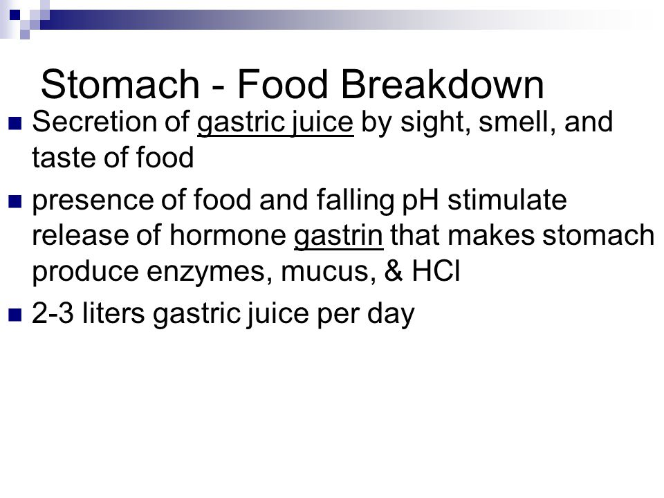 Stomach - Food Breakdown Secretion of gastric juice by sight, smell, and taste of food presence of food and falling pH stimulate release of hormone ga