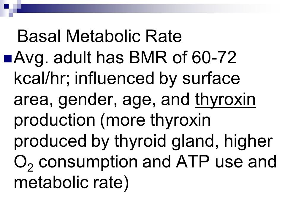 Basal Metabolic Rate Avg. adult has BMR of 60-72 kcal/hr; influenced by surface area, gender, age, and thyroxin production (more thyroxin produced by