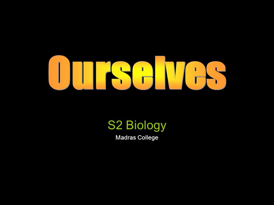 S2 Biology Madras College