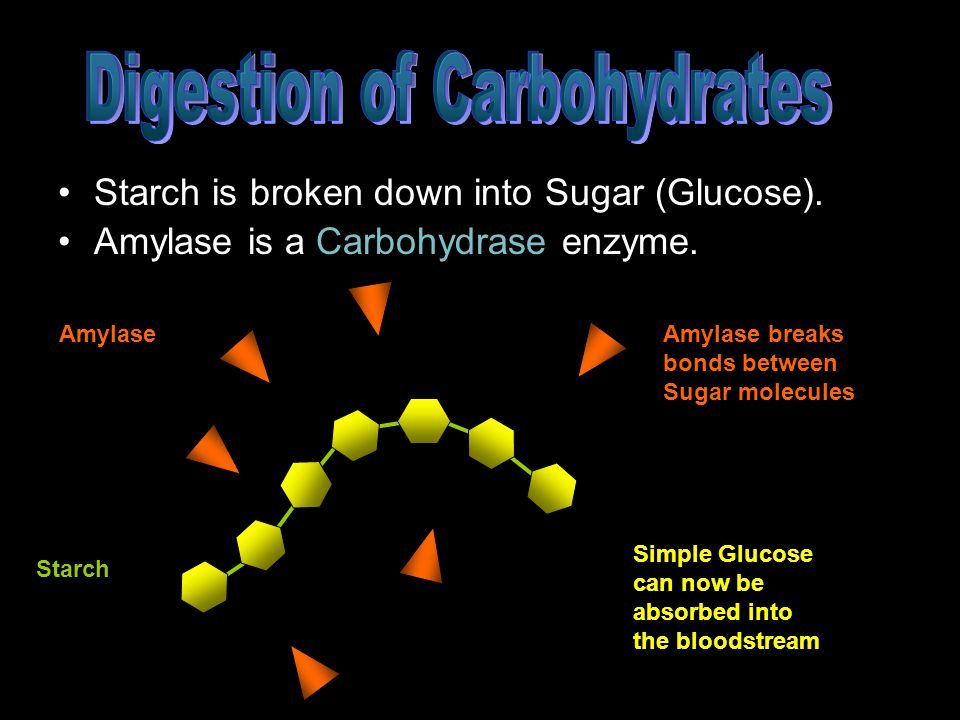 Starch is broken down into Sugar (Glucose).Amylase is a Carbohydrase enzyme.