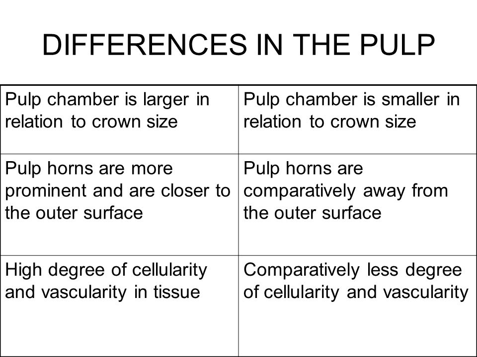 DIFFERENCES IN THE PULP Pulp chamber is larger in relation to crown size Pulp chamber is smaller in relation to crown size Pulp horns are more promine