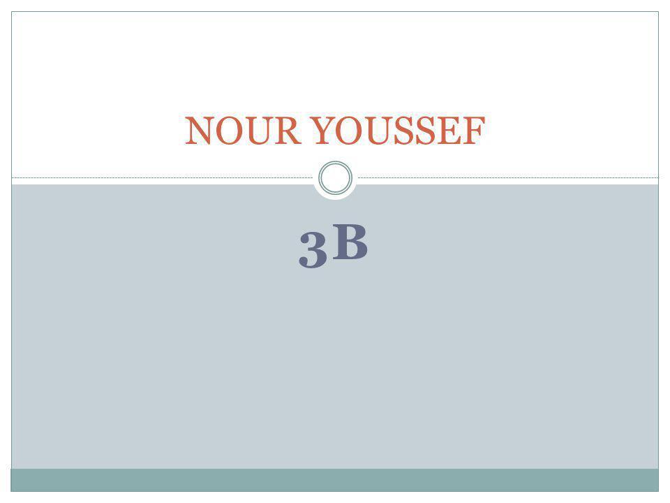 3B NOUR YOUSSEF