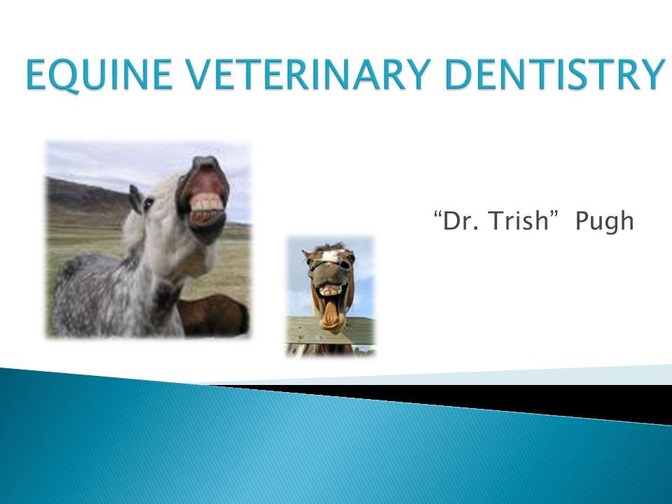Dr. Trish Pugh
