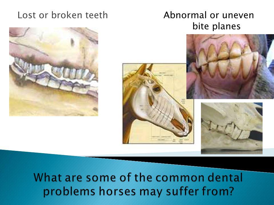 Lost or broken teethAbnormal or uneven bite planes
