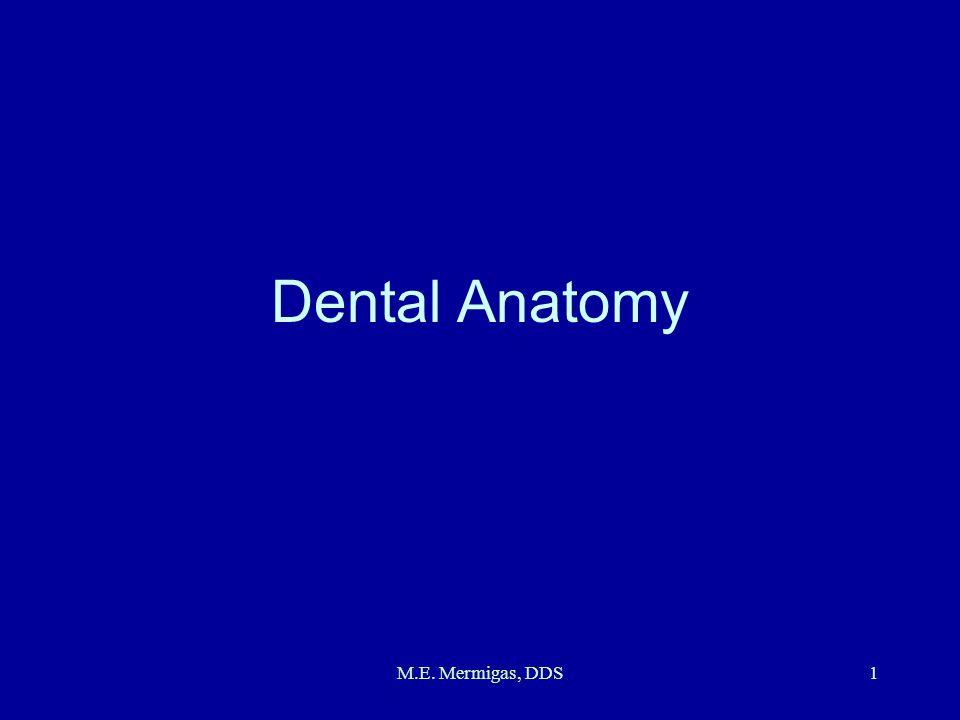 M.E. Mermigas, DDS1 Dental Anatomy
