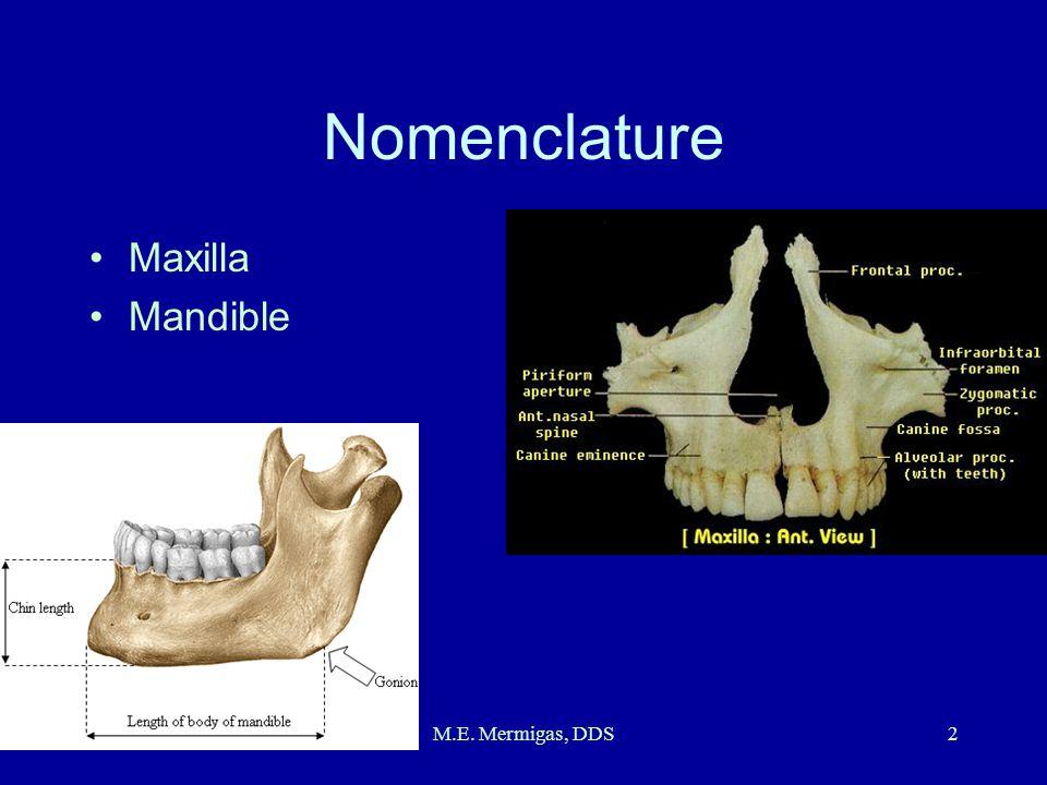 M.E. Mermigas, DDS2 Nomenclature Maxilla Mandible