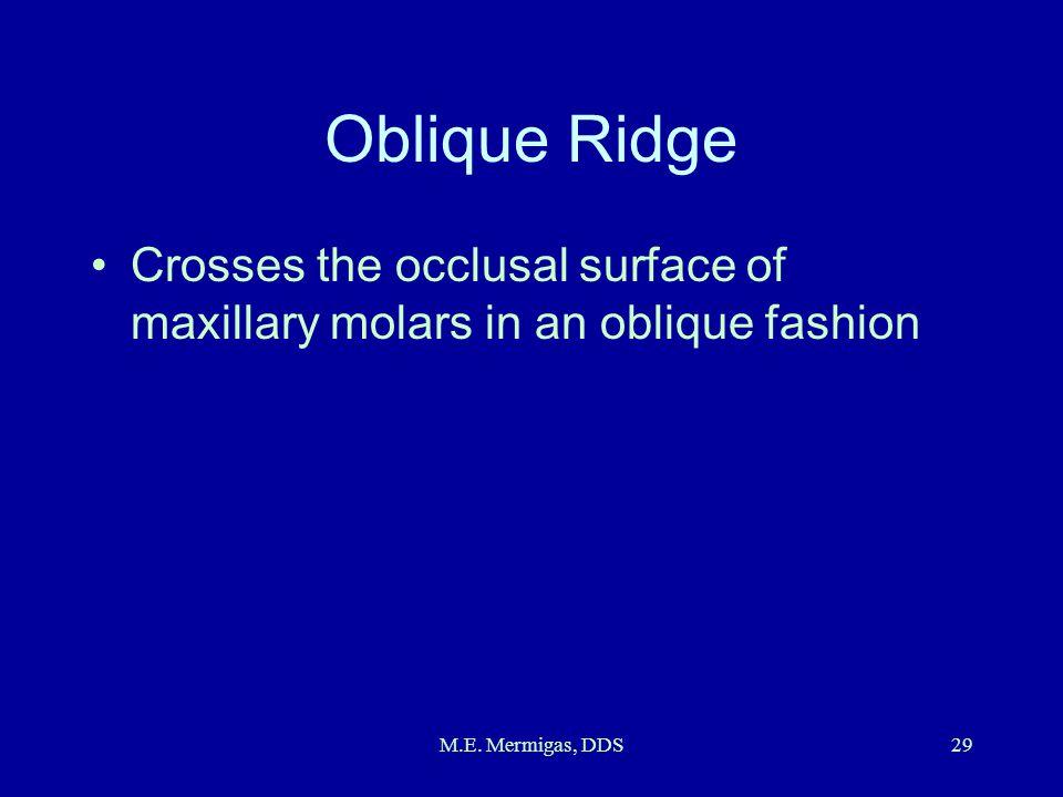 M.E. Mermigas, DDS29 Oblique Ridge Crosses the occlusal surface of maxillary molars in an oblique fashion