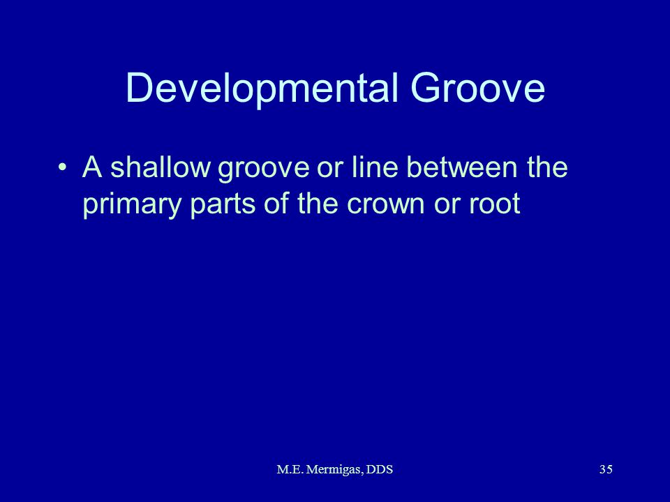 M.E. Mermigas, DDS35 Developmental Groove A shallow groove or line between the primary parts of the crown or root