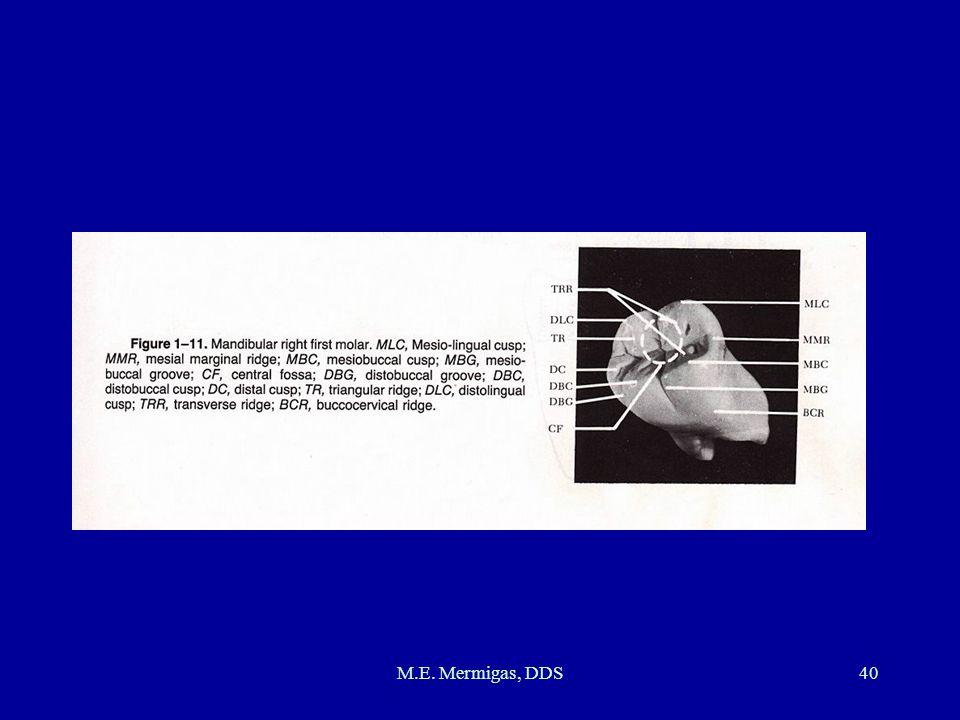 M.E. Mermigas, DDS40