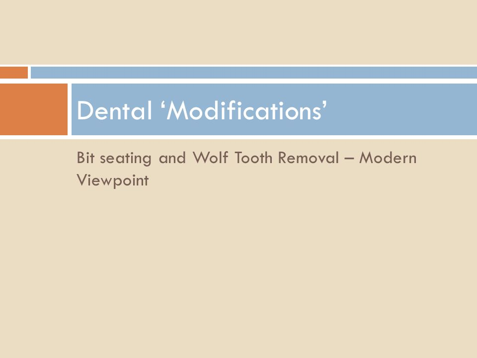 Bit seating and Wolf Tooth Removal – Modern Viewpoint Dental Modifications