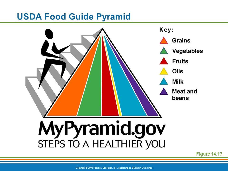 Copyright © 2009 Pearson Education, Inc., publishing as Benjamin Cummings USDA Food Guide Pyramid Figure 14.17