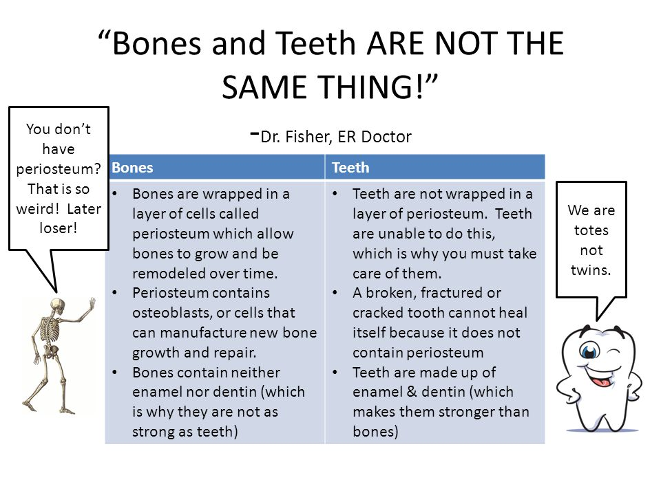 Bones and Teeth ARE NOT THE SAME THING. - Dr.