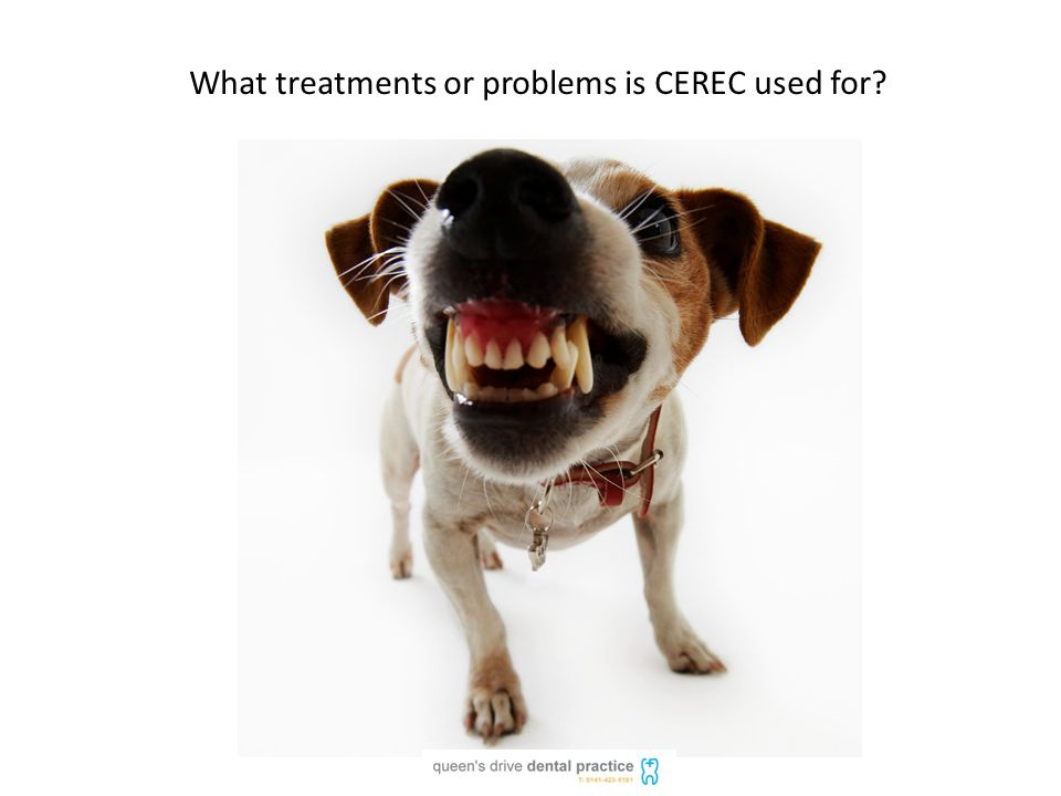 What treatments or problems is CEREC used for?