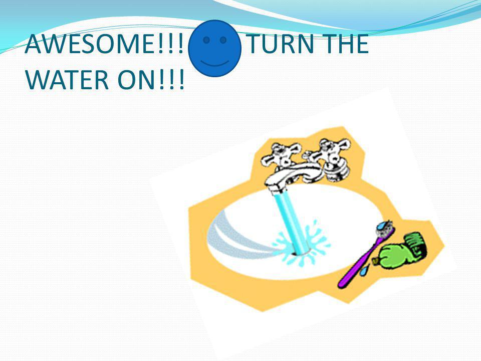 AWESOME!!! TURN THE WATER ON!!!