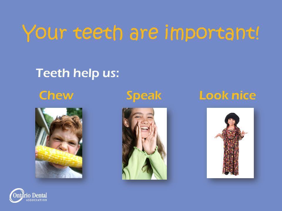 Your teeth are important! Teeth help us: Chew Speak