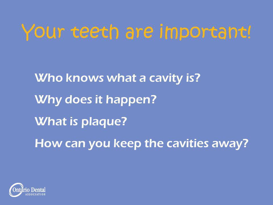 Your teeth are important! Teeth help us: Chew Speak Look nice