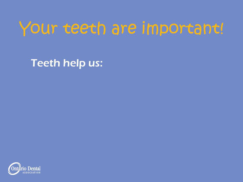 Your teeth are important! Teeth help us: