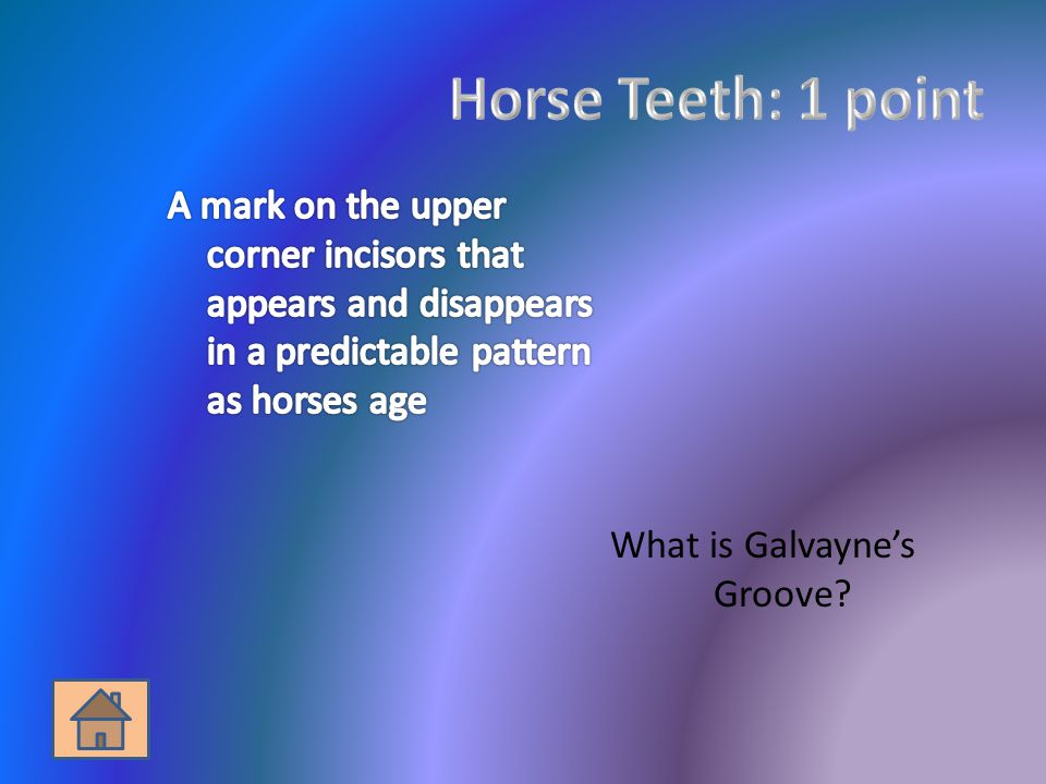 What is Galvaynes Groove