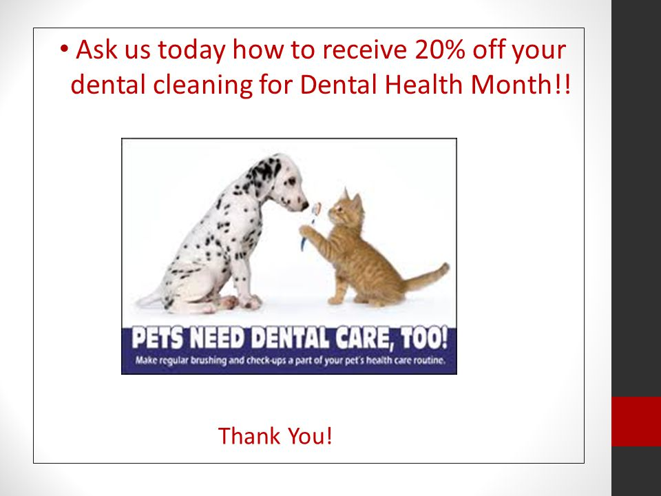 Ask us today how to receive 20% off your dental cleaning for Dental Health Month!! Thank You!
