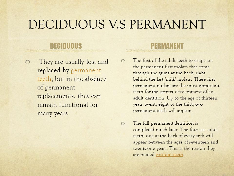 DECIDUOUS V.S PERMANENT DECIDUOUS They are usually lost and replaced by permanent teeth, but in the absence of permanent replacements, they can remain