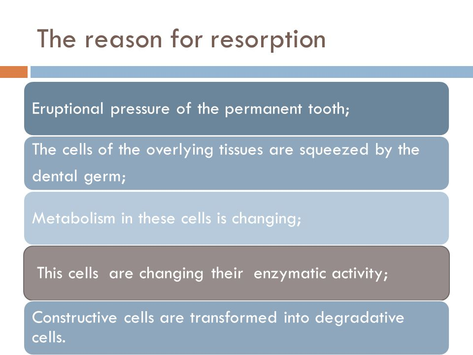 The reason for resorption Eruptional pressure of the permanent tooth; The cells of the overlying tissues are squeezed by the dental germ; Metabolism in these cells is changing; This cells are changing their enzymatic activity; Constructive cells are transformed into degradative cells.