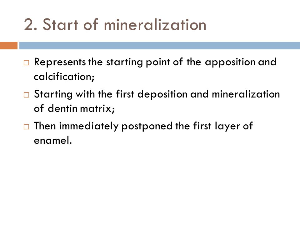 2. Start of mineralization Represents the starting point of the apposition and calcification; Starting with the first deposition and mineralization of