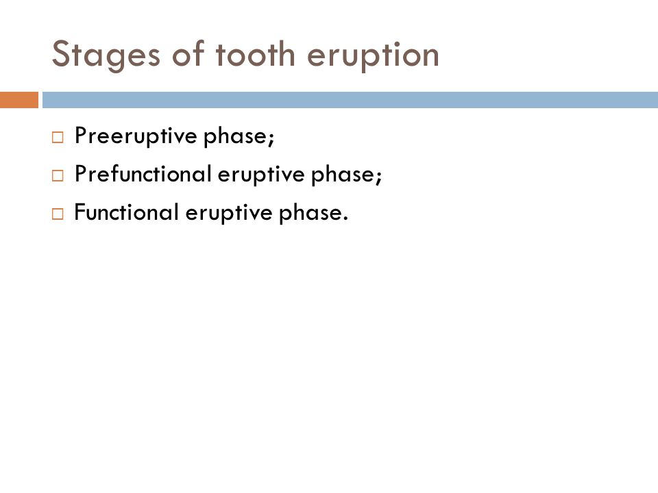 Stages of tooth eruption Preeruptive phase; Prefunctional eruptive phase; Functional eruptive phase.
