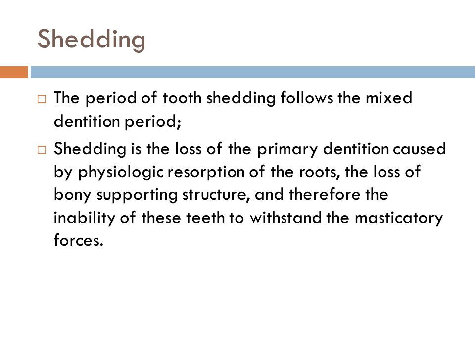 Shedding The period of tooth shedding follows the mixed dentition period; Shedding is the loss of the primary dentition caused by physiologic resorption of the roots, the loss of bony supporting structure, and therefore the inability of these teeth to withstand the masticatory forces.