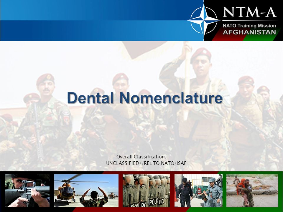 In this lecture we will teach you the basic dental nomenclature and term.