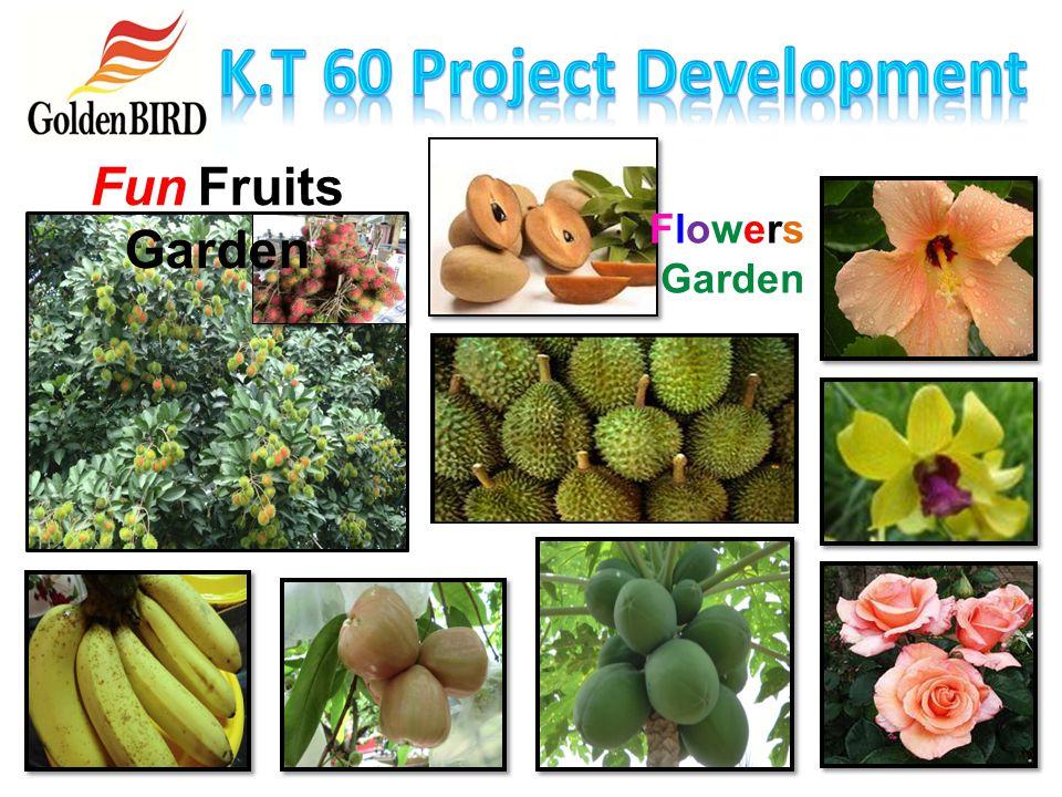 Organic Fertilizer Mushroom Farming Herbs Garden Agriculture Organic Farming