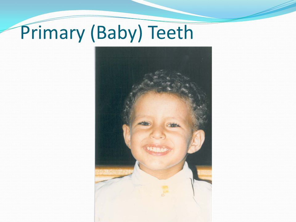 Primary (Baby) Teeth