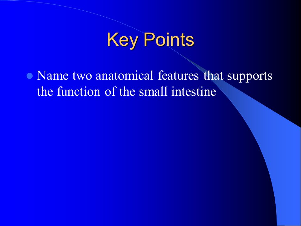 Key Points Name two anatomical features that supports the function of the small intestine