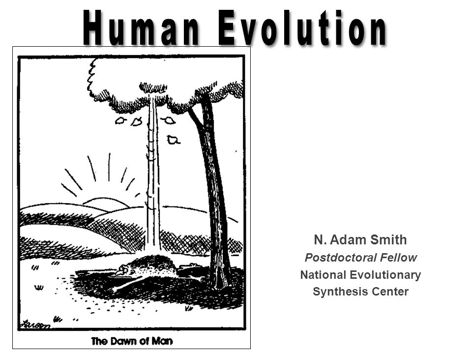 N. Adam Smith Postdoctoral Fellow National Evolutionary Synthesis Center