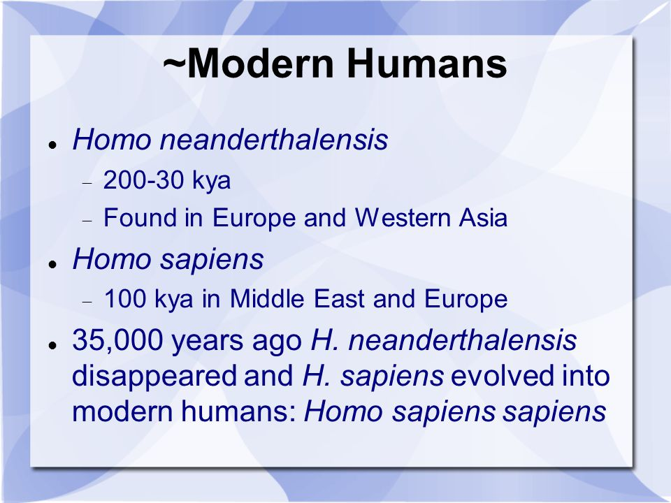 ~Modern Humans Homo neanderthalensis 200-30 kya Found in Europe and Western Asia Homo sapiens 100 kya in Middle East and Europe 35,000 years ago H. ne