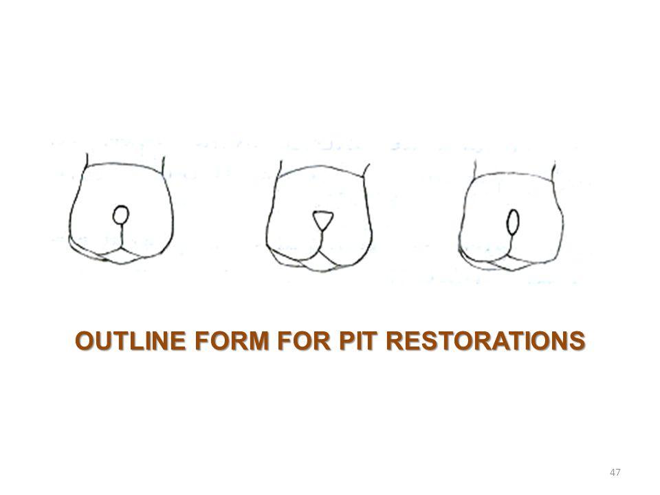 47 OUTLINE FORM FOR PIT RESTORATIONS