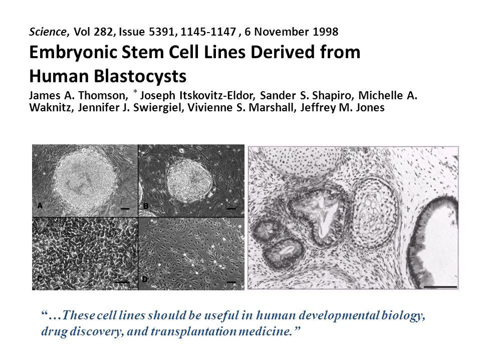 Cellule staminali embrionali (ESC)